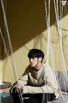 #Seventeen#Mingyu金珉奎#Trauma