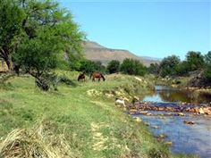 On Enjo Nature Farm you will find relaxing accommodation next to the river and enjoy complete privacy and great views of the Paardeberg mountains. Places To Travel, Places To See, Great View, Campsite, Weekend Getaways, Golf Courses, Beautiful Places, Country Roads, South Africa