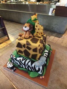 Cake of the jungle