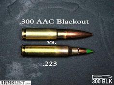 300 ACC BLACKOUT VS. 223.