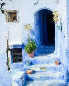 The Blue City | All of the buildings in the medina of Chefchaouen have been painted blue making it one of the most picturesque places I have been. What do you think? #morocco #chefchaouene #blue #bluecity #architecturephoto #cityphotography #streetphotography #travel #travelphotography #traveldestinations #travelawesome #travelpics #lonelyplanet #travelgram #photography #photographer #exploretocreate #justgoshoot #instagood #artofvisuals #chefchaouen #explore #city #medina by annakhtoft…