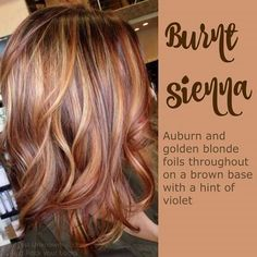 Burnt sienna. Love this hair color. Auburn and golden blonde foils throughout on a brown base with a hint of violet.