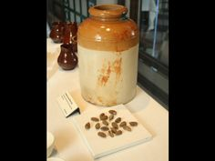 Titanic...A ceramic jar remained perfectly intact dry blackened olives pits were inside