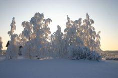 Vuoden 1987 tammikuu on Pohjois-Karjalan säähistorian kylmin, mitä tulee keskilämpötiloihin ja myös alimpiin lukemiin. Suomen kylmyysnapa sijaitsi 32... Outdoor, Outdoors, Outdoor Games, The Great Outdoors