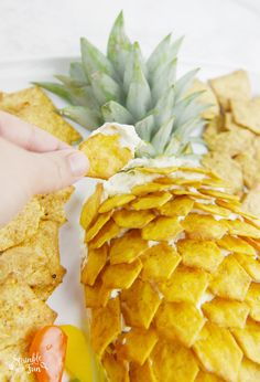 Pineapple Cheeseball Platter - Sprinkle Some Fun This Pineapple Cheeseball Platter would be perfect to serve for any summer event. Everyone will love this delicious Hawaiian inspired dip! Hawaiian Appetizers, Hawaiian Dishes, Hawaiian Luau Party, Appetizers For Party, Appetizer Recipes, Picnic Recipes, Hawaiian Theme Food, Hawaii Party Food, Hawaiian Recipes