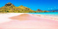 Wisata Pantai pink di Lombok