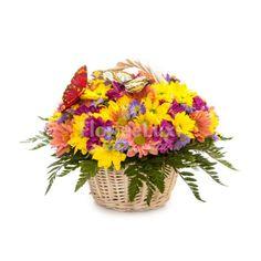 Cosulet crizanteme primavaratice, delicat si feminin, cu cele mai vesele crizanteme in decor de verdeata proaspata!