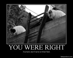 You Were Right - Demotivational Poster