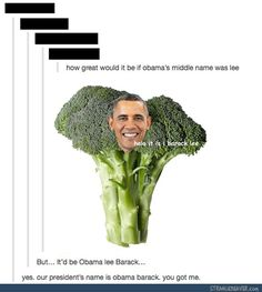 Funny Tumblr Posts 4-29 I couldn't stop thinking about broak from pokemon lol sorry I know I spelled it wrong