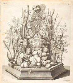 La Hagströmer Medico-Historical Library fondée en Suède pour préserver des ouvrages anciens sur l'histoire de la médecine a sur son site toute une collection de vieilles illustrations médicales, biologiques et naturalistes plus fantastiques les unes que les autres. [Gros bisou à Axolot]
