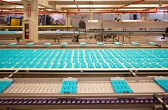 Inside the Marshmallow Peeps Factory - One of my great losses, when I found out I was Diabetic.  I Love me some peeps.