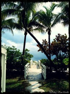 South Beach, Miami FL