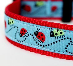 Lucky Ladybug Dog Collar / 100% Donation to Lucky Star Cavalier Rescue