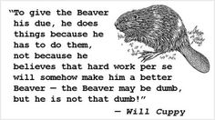 Will Cuppy - Beaver