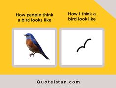 How people think a bird looks like Vs How I think a bird look like Expectation Vs Reality, Law Of Attraction Quotes, Motivation, Be Yourself Quotes, My Images, Quote Of The Day, Wise Words, Funny Pictures, Life Quotes