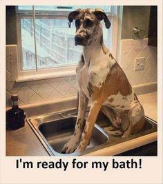 I'm ready for my bath!