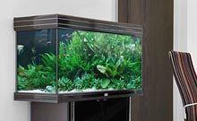 Aquariums Et Meubles Achat Aquarium De Qualite Animalerie Truffaut