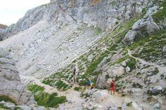 La magnifica ed imponente parete sud è stata protagonista di alcune delle pagine più importanti dell'alpinismo degli anni Cinquanta e Sessanta ed è porta di collegamento tra le anime ladine della zona di Belluno e quelle trentine. Non da ultimo ospita una folta colonia di stambecchi, magari riusciremo ad avvistarne uno! http://www.jonas.it/trekking_dolomiti_marmolada_457.html