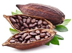 """Cocoa is also called as """"cacao"""" (derives from the Spanish word cacao) and this is mainly grown for its bean from which cocoa solids and cocoa butter are extracted. I Love Chocolate, How To Make Chocolate, Chocolate Flavors, Chocolate Recipes, Chocolate Making, Chocolate Coffee, Chocolate Benefits, Sore Throat Remedies, Le Cacao"""