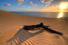 Una PMA nel deserto