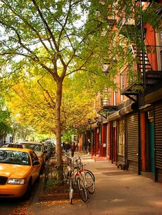 don't you just love new york in the fall? ...makes me want to buy school supplies