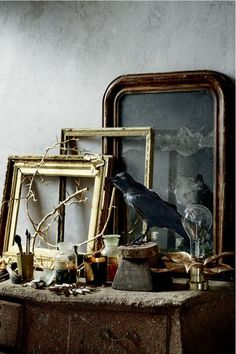 Love it Old frames, a taxidermy bird, odds and ends...