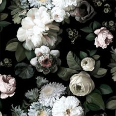 Ellie Cashman Design - Dark Floral Wallpaper