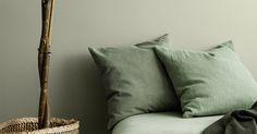 PALE LINDEN 8281 Farge Interiør | Jotun.no