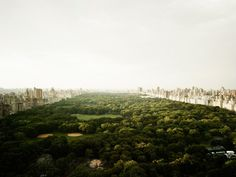 travel | central park | joseph hoflehner photography