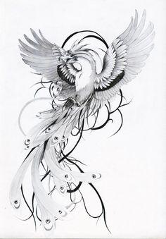 a phenix tattoo design. Phoenix Tattoo Feminine, Phoenix Bird Tattoos, Phoenix Tattoo Design, Phoenix Back Tattoo, Rising Phoenix Tattoo, Pretty Tattoos, Beautiful Tattoos, Bird Drawings, Tattoo Drawings