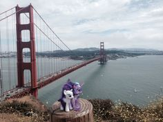 Equestria Daily: Ponies Around the World 2015 - Day 1 Submissions