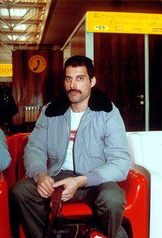 Freddie - queen Photo