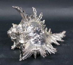 For Auction: Scully & Scully Sterling Spiky Conch Shell (#0020) on Jun 02, 2021 | Nye & Company in NJ Shell Centerpieces, Scully And Scully, Shell Earrings, Vintage Turquoise, Conch, Nye, Peridot, Silver Plate, Hand Carved