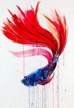 Take a look at Dave White's awesome oil paintings ft. this stunning Siamese fighting fish http://ind.pn/1lh0v59  pic.twitter.com/q3CZTtNeSv