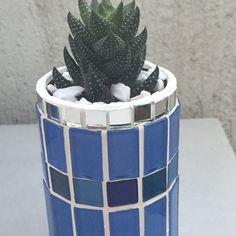 Cachepô com mosaico e suculenta!