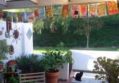 17 prayer flags (and 1 feral kitty) by janelafazio, via Flickr