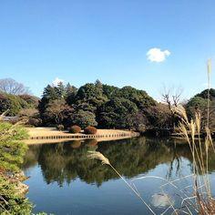 Shinjuku Gyoen  #latergram #tokyo #japan #japon #park #neverstopexploring #instatravel #travelgram #traveler #traveling #nature #ig_japan #ontheroad #travelblog #東京