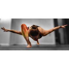 cheryldf:  I feel like a yoga airlplane in this lizard pose variation. :)