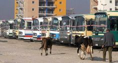 Warnings from a seasoned traveller: do not -- ever -- attempt the Albanian bus system