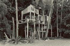 Taylor Camp, a tree house village on Kauai