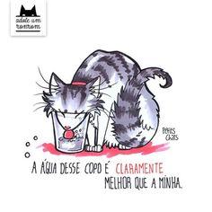 Livro ilustrado mostra como é a vida a partir da visão dos gatos