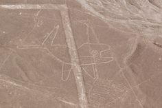 Nazca lines: Whale