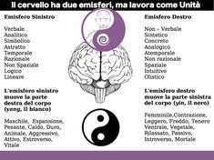 Due emisferi: Yin-Yang