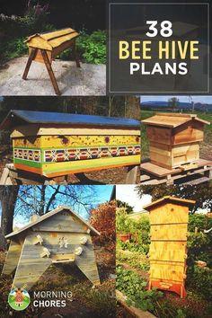 38 Free DIY Bee Hive Plans & Ideas That Will Inspire You To Become A Beekeeper #diybeekeeper #backyardbeekeeper #beekeepingideas