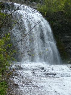 Image result for hector falls flood
