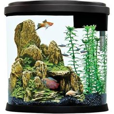 Sweet-Tempered Aquael Pump For Reef Master Fish Tank Filter Pump With The Best Service Pumps (water) Fish & Aquariums