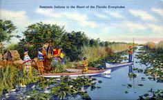 VTG Seminole Indians Heart Of Florida Everglades Old Unused Linen Postcard Teich Florida City, Old Florida, Vintage Florida, State Of Florida, Everglades National Park Florida, Seminole Indians, American Indians, Seminole Florida, Back Road