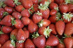 Winter Fruit or Vegetable Gardens in Florida thumbnail
