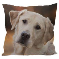 Decorative Pale Labrador Cushion