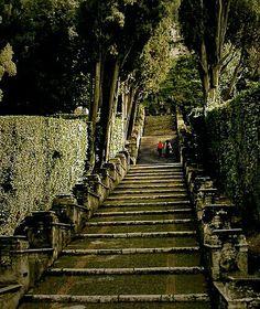 Villa d'Este. The garden.Tivoli, Rome